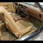 1979 Pontiac Trans Am full